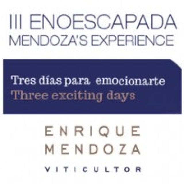 III Mendoza Experience 2014
