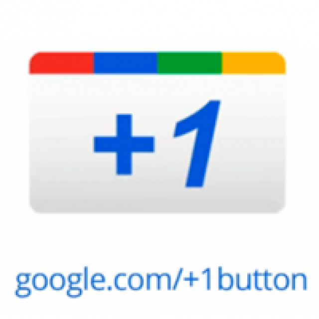 Google +1 Button in Cases Noves website