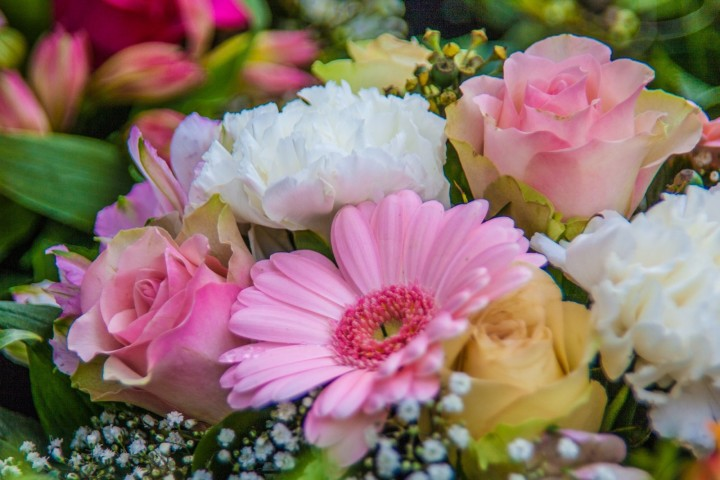 Surprises with flowers